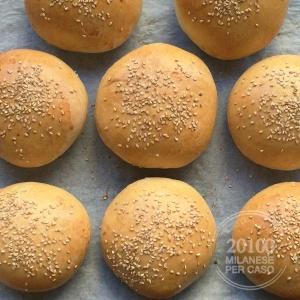 buns-hamburger-real-american-taste-cotti